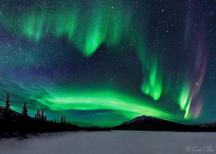 grant-collier-northern-lights-2